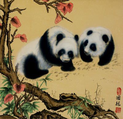 Cute Chinese Pandas Painting Cute Animals Cats Kittens